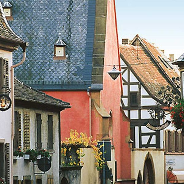 Incentive trip to the Pfalz region / Germany